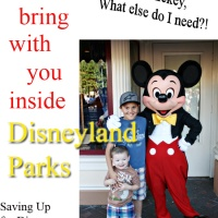 A Day at the Amusement Park -What to bring With You (And What to Leave at Home)