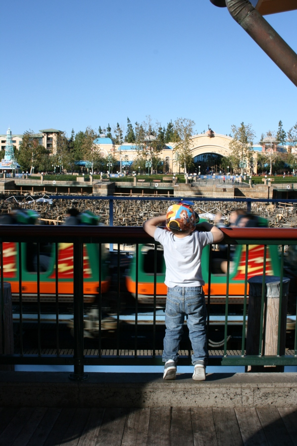 Watching California Screamin' riders fly by!