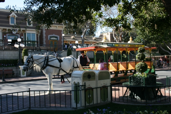 Essential Disneyland - What You HAVE to See, Do and Eat on Your First Trip!